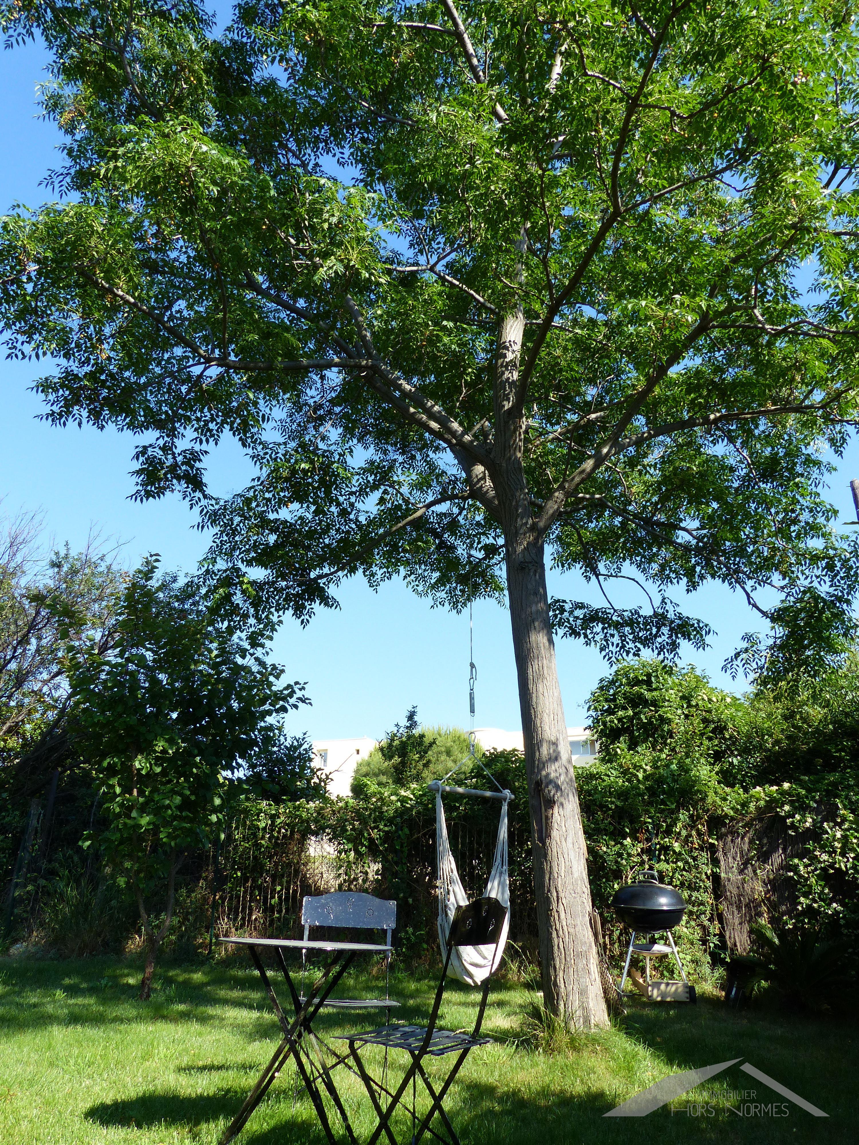 Rez de jardin avec piscine au cabot for Rez de jardin